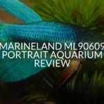 Marineland ML90609 Portrait Aquarium Review