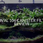 Fluval 106 Canister Filter Review (NEW!)