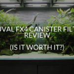 Fluval Fx4 Canister Filter Review (Is It Worth It?)
