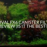 Fluval Fx6 Canister Filter Review (Is It The Best?)