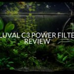 Fluval c3 Power Filter Review (2019 REVIEW)