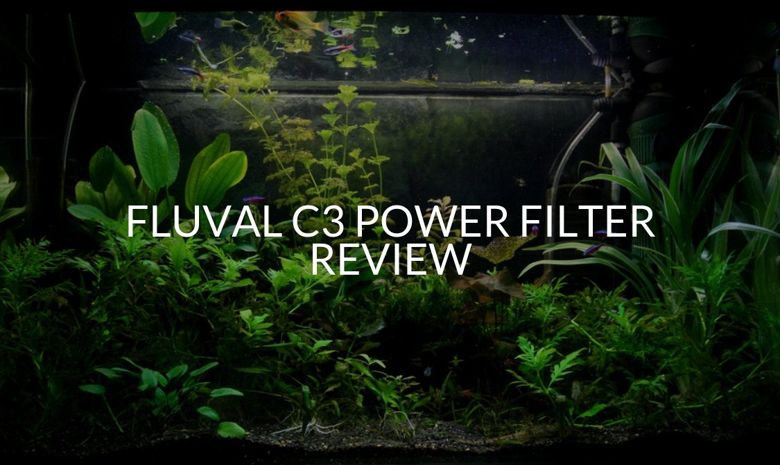 Fluval c3 Power Filter Review